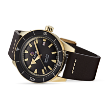 Rado Captain Cook Automatic Bronze Mens Watch R32504306