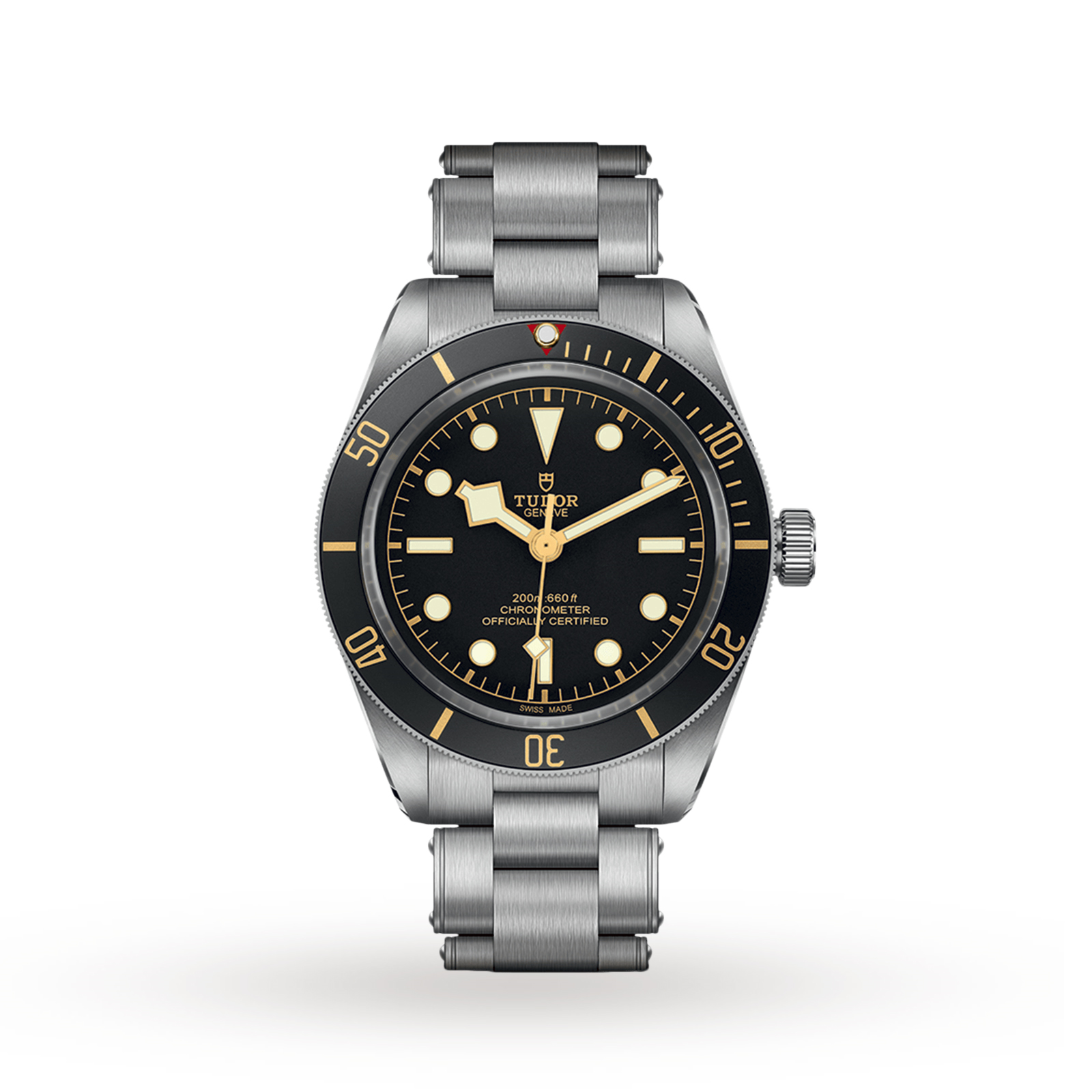 Tudor Black Bay...