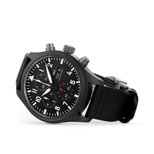 IWC Pilot's TOP GUN 44.5mm Mens Watch IW389101