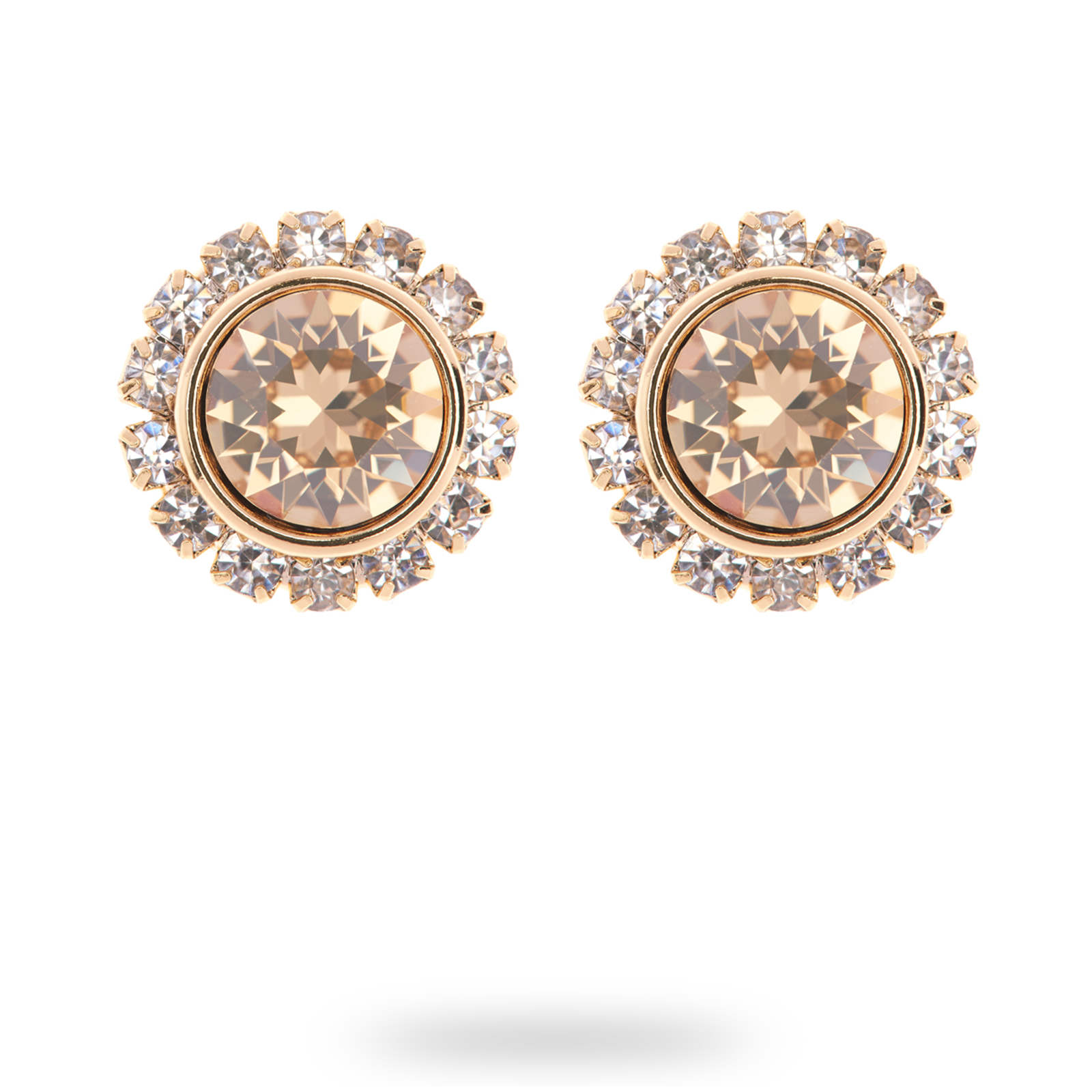 e5516ca1d1cf Ted Baker PVD Gold Plated Sully Crystal Daisy Stud Earrings ...