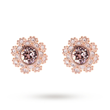 Ted Baker Seraa Rose Crystal Daisy Lace Stud Earrings