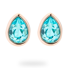 Ted Baker Cirosar Crystal Peardrop Earrings